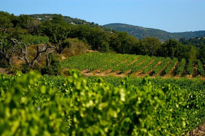 Aude - Environnement investissement 2